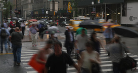 New York City Pedestrians Rushing in the Rain Timelapse Footage