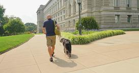 Man Walks Dog Near the Library of Congress in Washington DC Footage