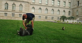 Man Plays with Dog on the Lawn of the Library of Congress in Washington DC Footage