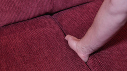 Finding Glasses in Sofa Cushions Footage