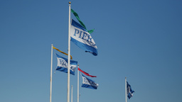 Pier 39 Flags Footage