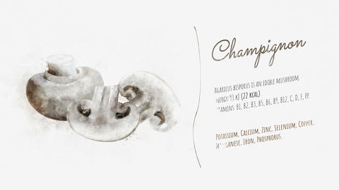 Information and description of Champignon Animation