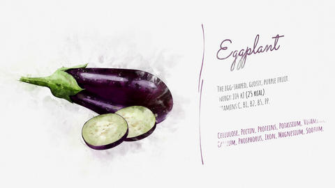 A beautifully animated card with information about Eggplant Stock Video Footage
