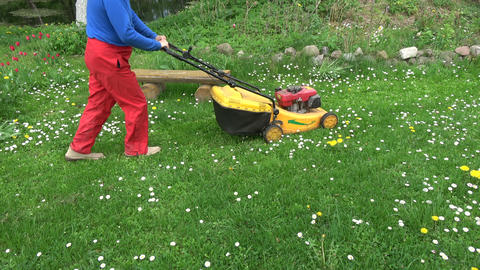 cut spring grass with lawn mower in garden Live Action