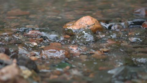 4k - small creek - kolomenskoye 2 영상물