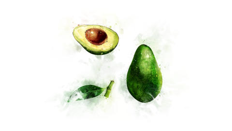 Avocado painted in watercolor Animation