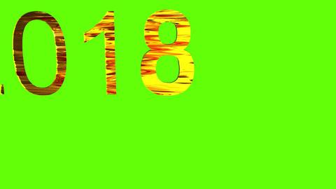 2018 2019 golden text and green background 애니메이션
