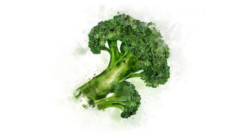 Broccoli on the alpha channel Animation