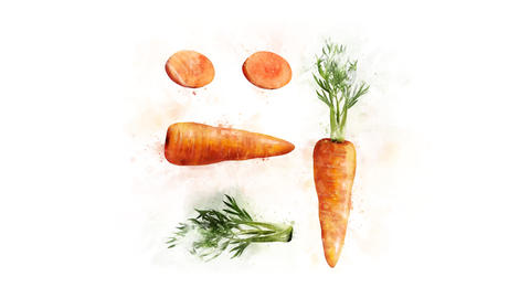 Animation drawing Carrots Animation