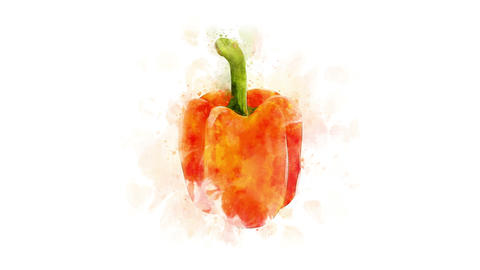 Orange bell pepper on a transparent backgroun Animation