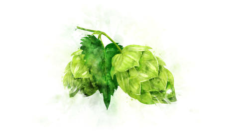 Animated image of hops Animation