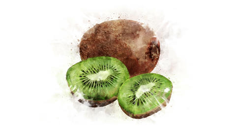 Animated image of kiwi Animation