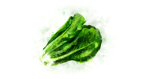Animation of a lettuce salad Image Animation