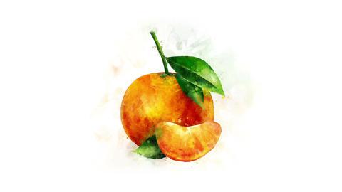 Mandarin Animation Animation