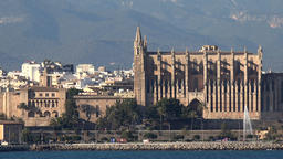 Spain Palma de Mallorca Cathedral and La Almudaina palace seen from water 영상물