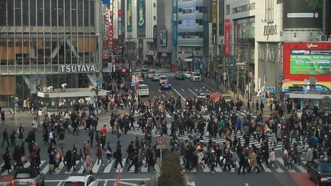 People across Shibuya intersection long shot at Shibuya ライブ動画