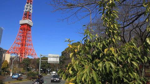 Leaves behind Tokyo tower middle shot deep focus ビデオ