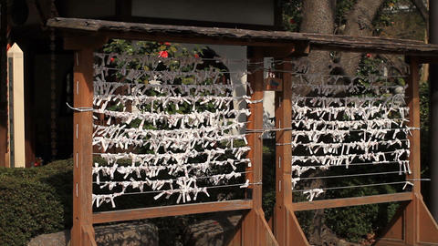 Randomu fortune OMIKUJI middle shot at Zojoji temple Footage