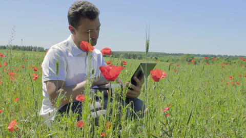 Mn is studying poppy flowers on a laptop and thumb up Archivo