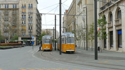 Yellow trams on the street of Budapest, Hungary Live Action