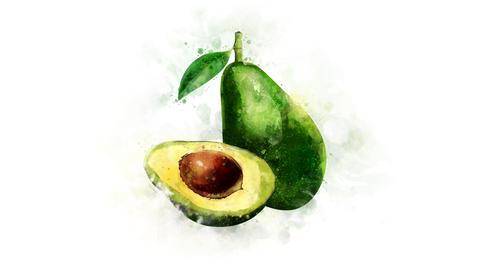Animated illustration of Avocado Animation