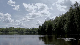 Beautiful still lake with trees on the horizon and white puffy clouds in the Footage