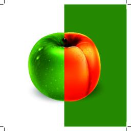 Apricot and green apple. Vector illustration Vector