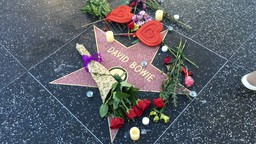 David Bowie Hollywood Star Memorial Footage