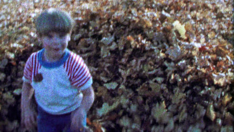 1967: Boy reveals himself from hiding autumn fallen leaf pile Footage