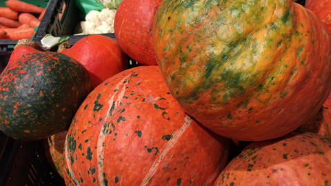 Pile of different sized orange pumpkins in the market. Autumn or fall harvest Footage