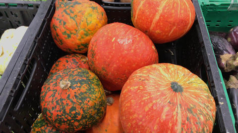 Ripple orange pumpkins in the supermarket. 4k footage. Closeup shot Footage