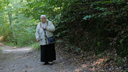 Elderly woman with a walking stick on a walk in park Live Action