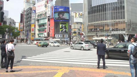 Shibuya crossing daytime midium shot standard focus ビデオ