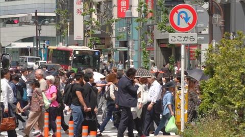 Shibuya crossing long shot deep focus ビデオ