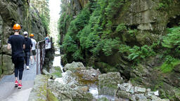 Kamienczyk gorge. Karkonosze National Park - UNESCO biosphere reserve Live Action
