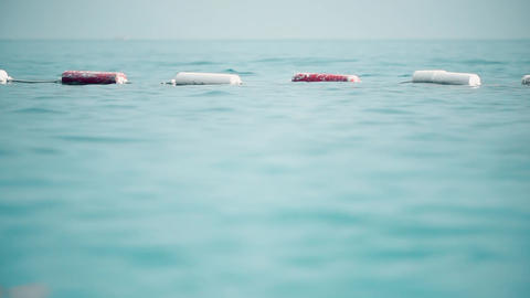 Swimming area limit at sea marked with floating buoys Live Action