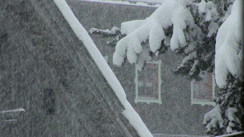 00012 Winter002 Schneefall1 Stock Video Footage
