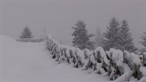00018 Winter006 Schneefall3 Stock Video Footage