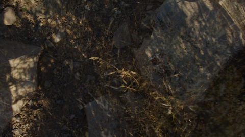DesertFloor4 Footage