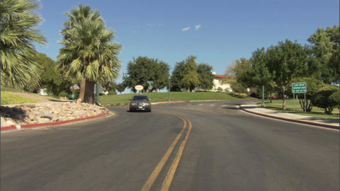Driving Street Trees 1 Stock Video Footage