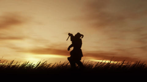 Sunset Samurai Stock Video Footage