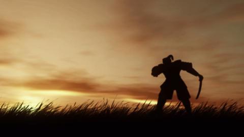 Sunset Samurai Stock Video Footage