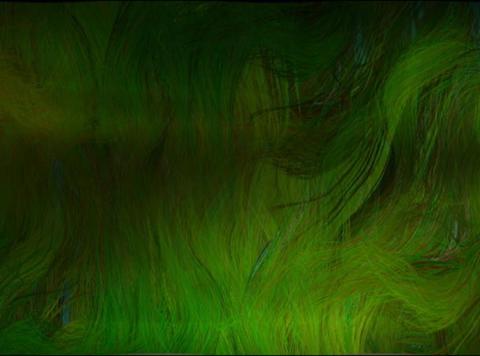 Ocean grass1(L) Stock Video Footage