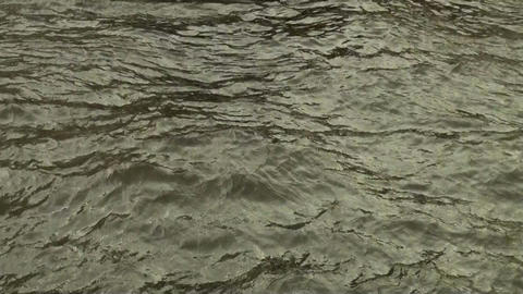 The surface of the water Footage