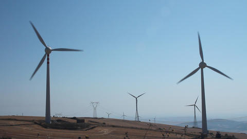 Field of wind turbines Footage