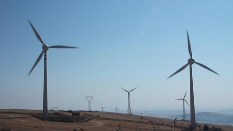 Field of wind turbines Footage