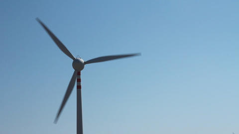 Wind turbine in function and flowers Stock Video Footage