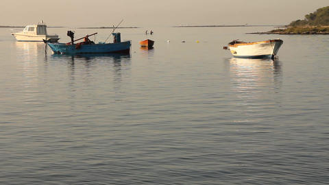 Fisherman coming back to the port Stock Video Footage