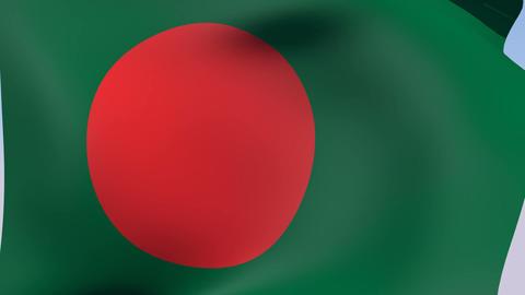 Flag of Bangladesh Stock Video Footage