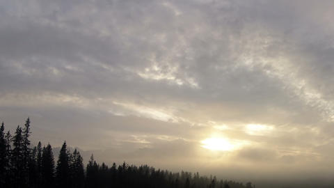 Mist and clouds over the forest Stock Video Footage